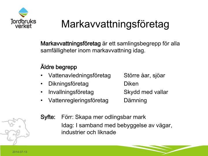 Markavvattningsföretag