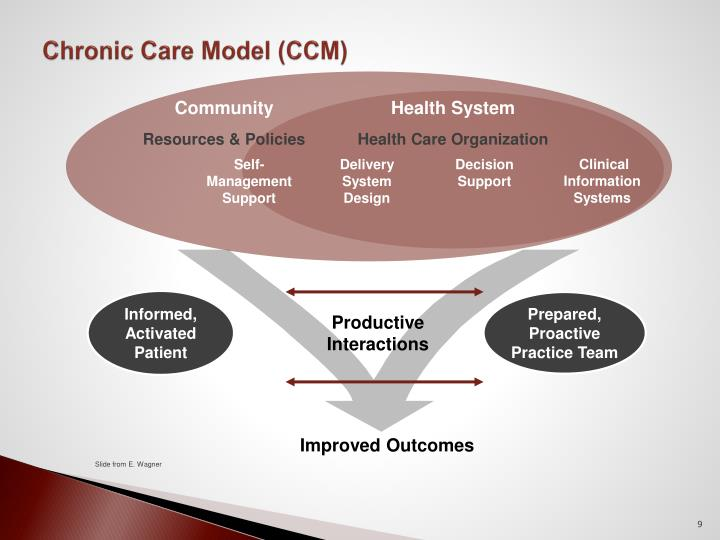Chronic Care Model (CCM)