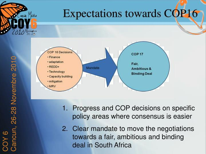 Expectations towards COP16