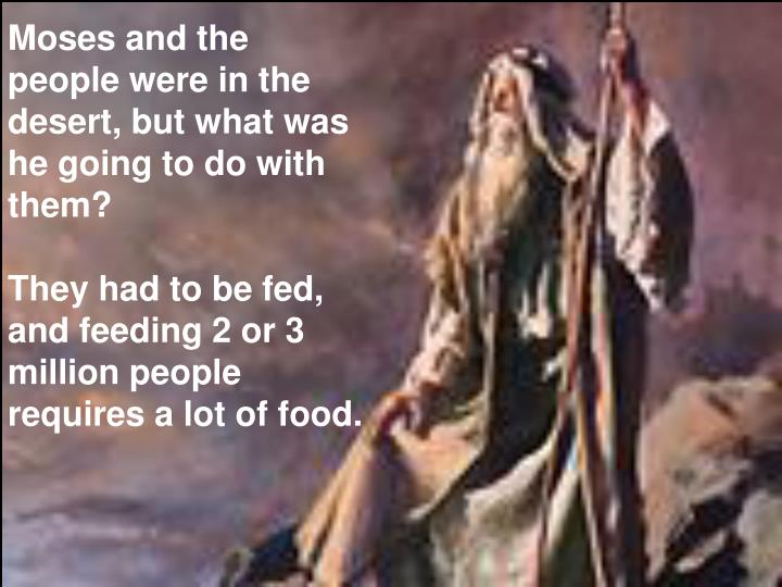 Moses and the people were in the desert, but what was he going to do with them?