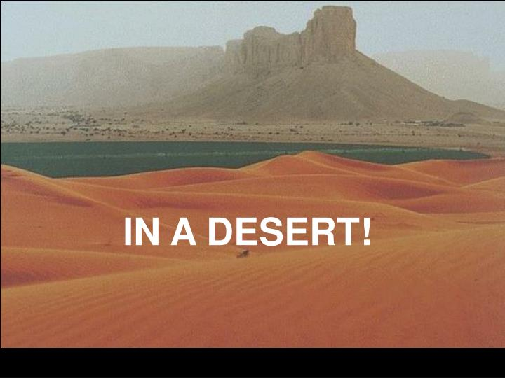 IN A DESERT!
