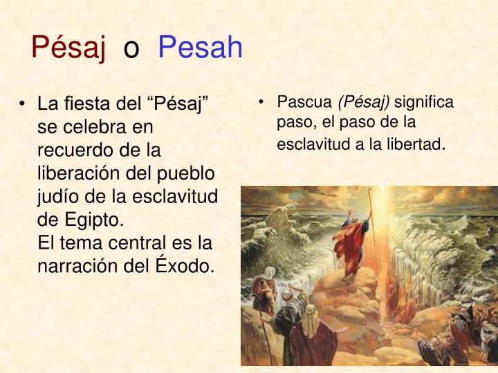 """La fiesta del """"Pésaj"""" se celebra en recuerdo de la liberación del pueblo judío de la esclavitud de Egipto.                 El tema central es la   narración del Éxodo."""