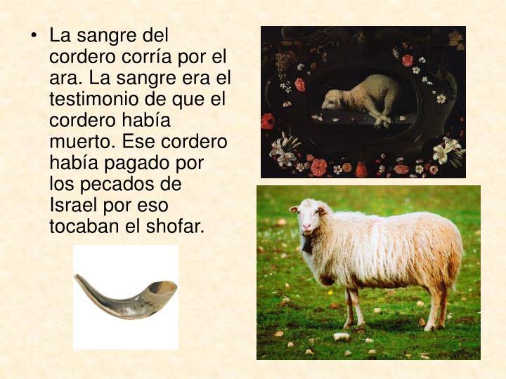 La sangre del cordero corría por el ara. La sangre era el testimonio de que el cordero había muerto. Ese cordero había pagado por los pecados de Israel por eso tocaban el shofar.