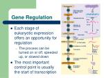 gene regulation1