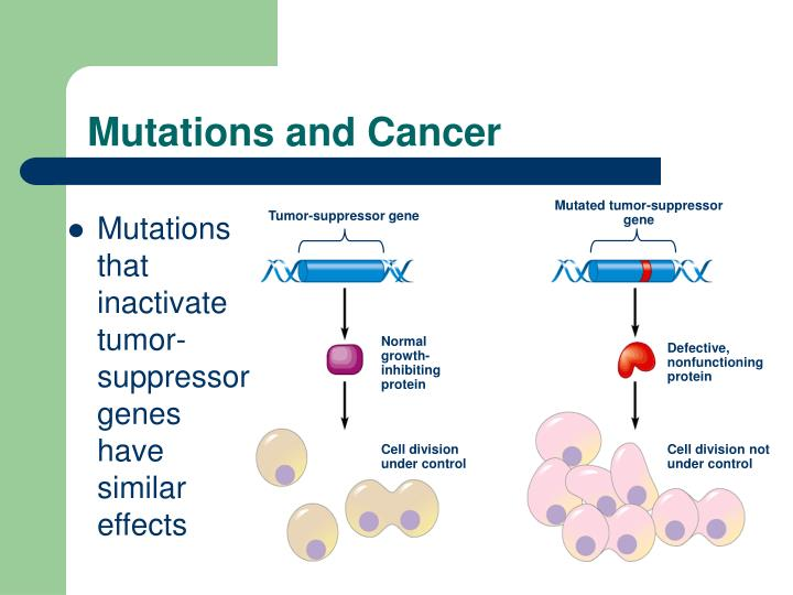 Mutated tumor-suppressor gene