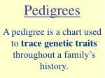 pedigrees