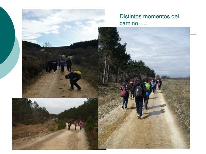 Distintos momentos del camino…..