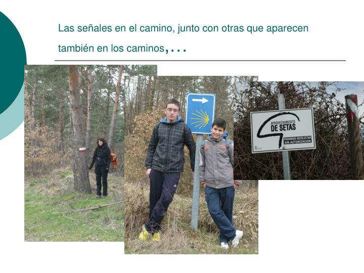 Las señales en el camino, junto con otras que aparecen también en los caminos