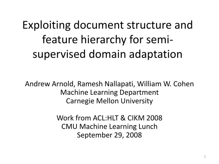Exploiting document structure and feature hierarchy for semi supervised domain adaptation