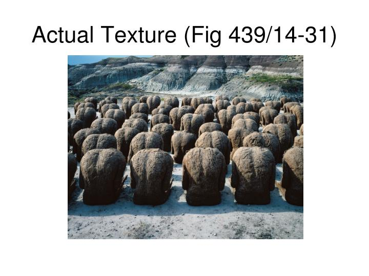 Actual Texture (Fig 439/14-31)