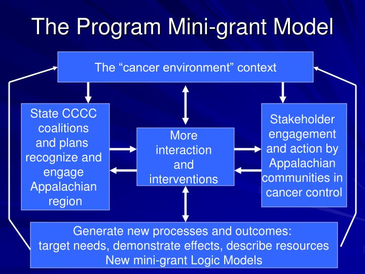 The Program Mini-grant Model