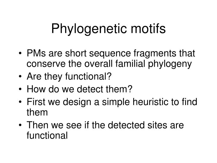 Phylogenetic motifs