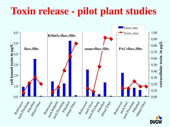 Toxin release - pilot plant studies