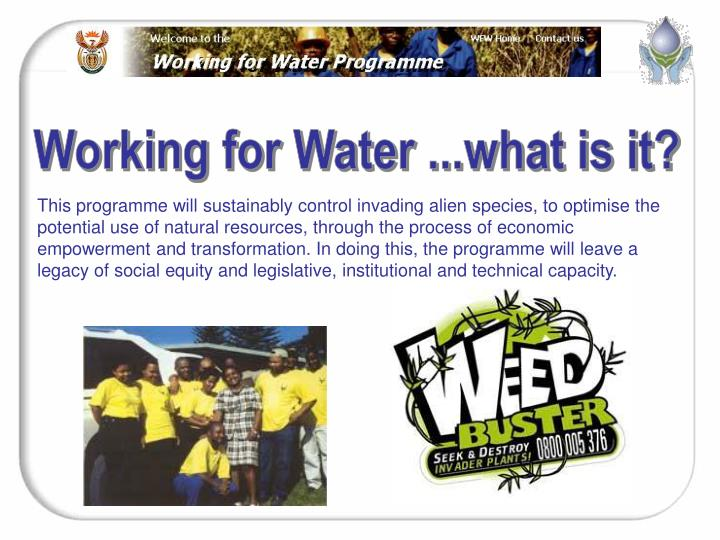 Working for Water ...what is it?