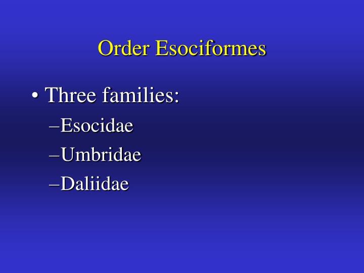 Order Esociformes