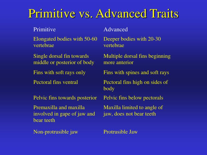 Primitive vs. Advanced Traits