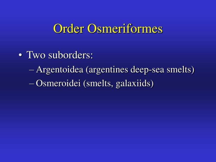 Order Osmeriformes