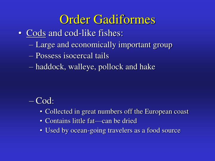 Order Gadiformes