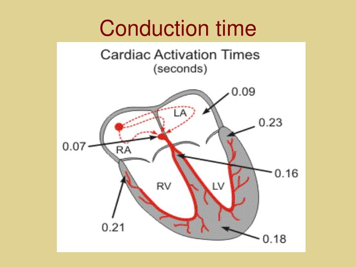 Conduction time