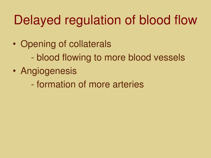 Delayed regulation of blood flow