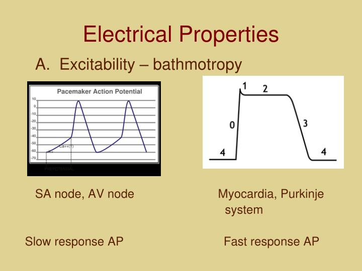 Electrical Properties
