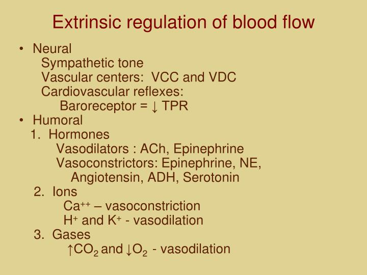 Extrinsic regulation of blood flow