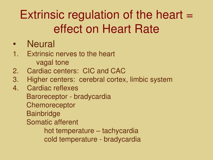 Extrinsic regulation of the heart = effect on Heart Rate