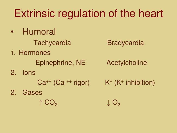 Extrinsic regulation of the heart
