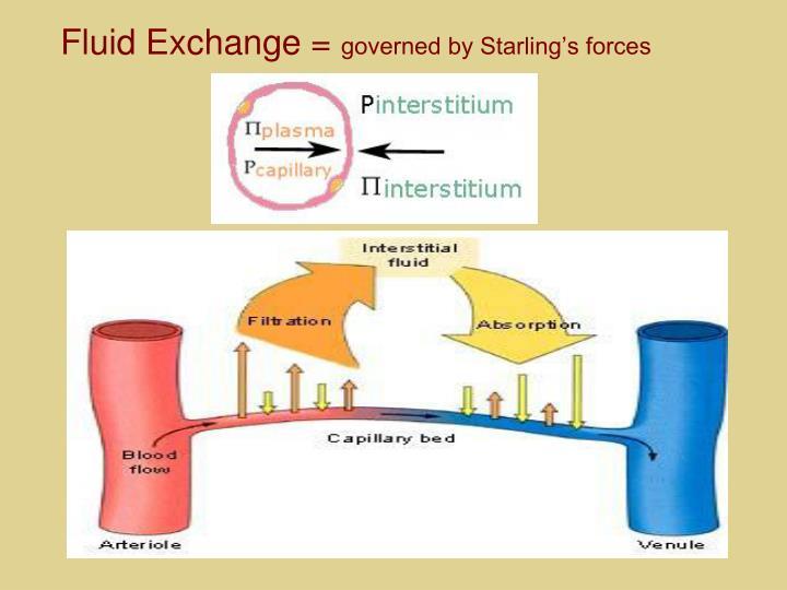 Fluid Exchange =
