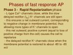 phases of fast response ap4