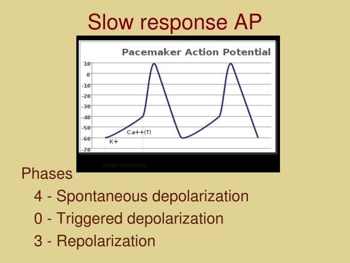 Slow response AP