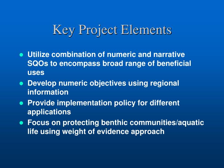Key Project Elements