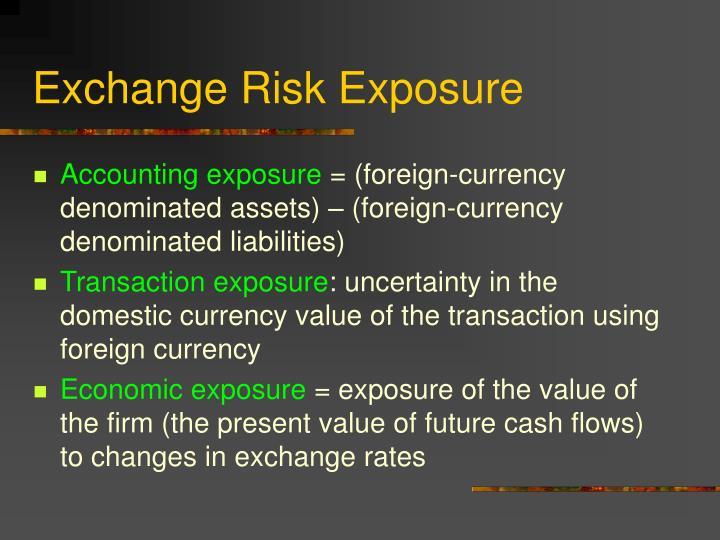 Exchange Risk Exposure