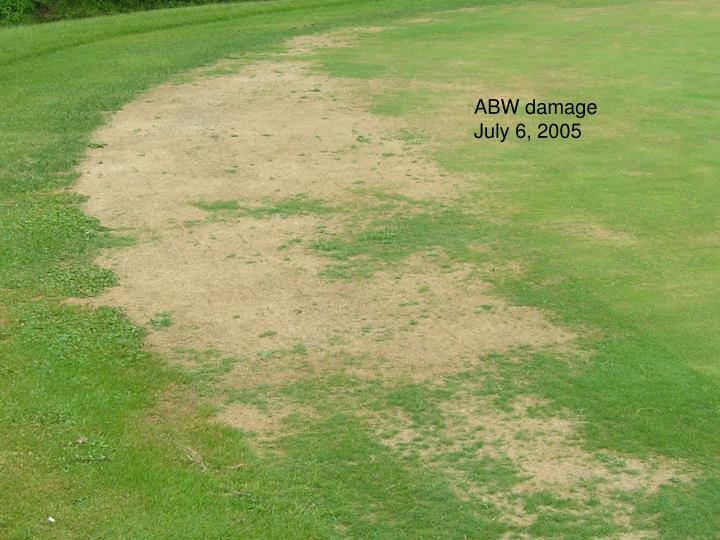 ABW damage