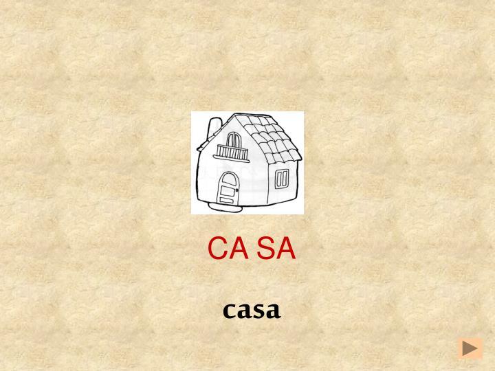 CA SA