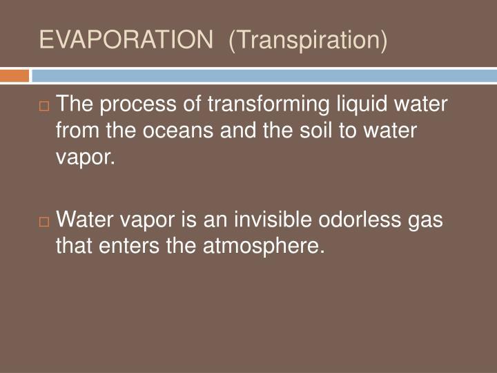 EVAPORATION  (Transpiration)