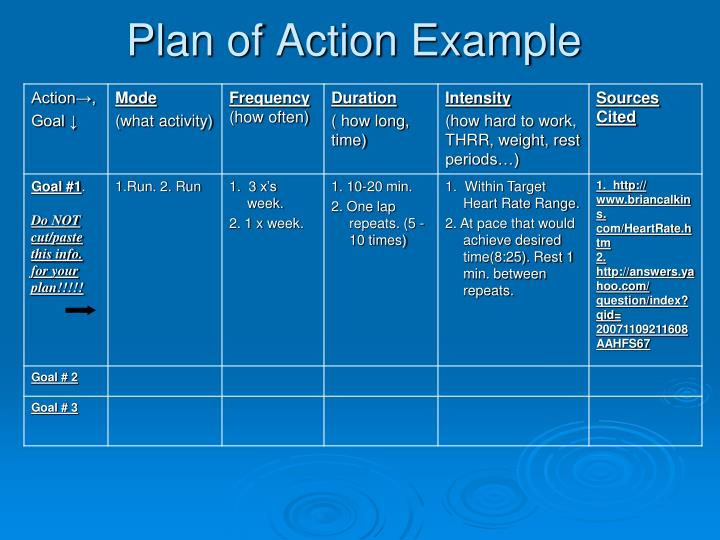 Plan of Action Example