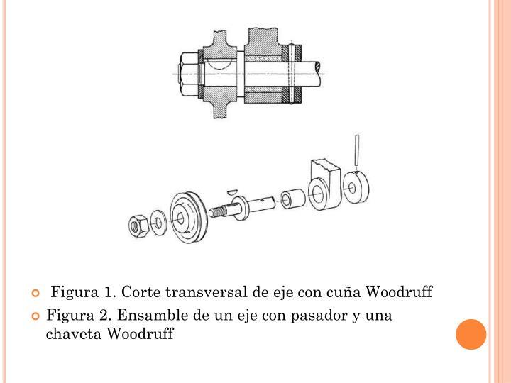 Figura 1. Corte transversal de eje con cuña