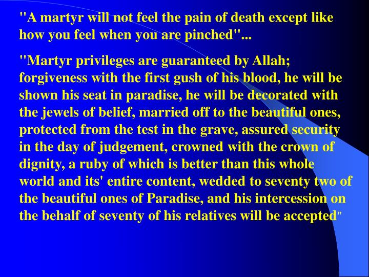 """A martyr will not feel the pain of death except like how you feel when you are pinched""..."