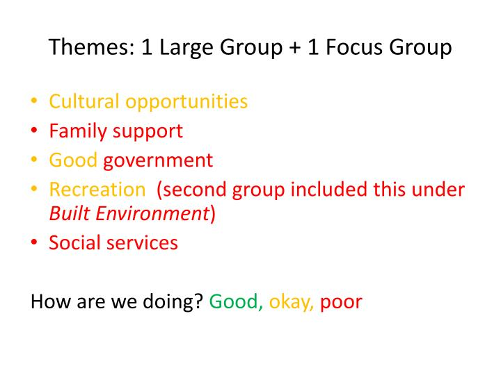 Themes: 1 Large Group + 1 Focus Group