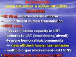 background avian influenza human influenza1