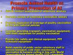 promote animal health as primary prevention of ai