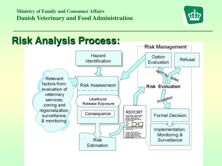 Risk Analysis Process: