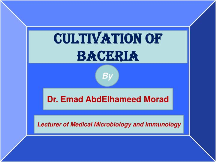 Cultivation of baceria