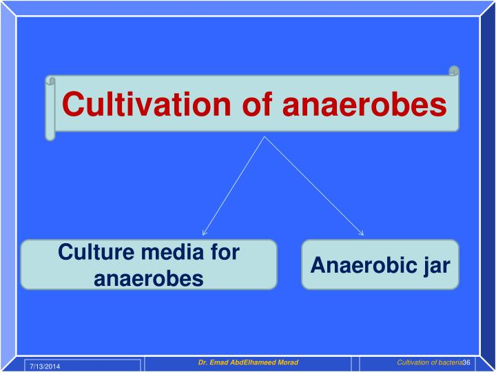 Cultivation of anaerobes