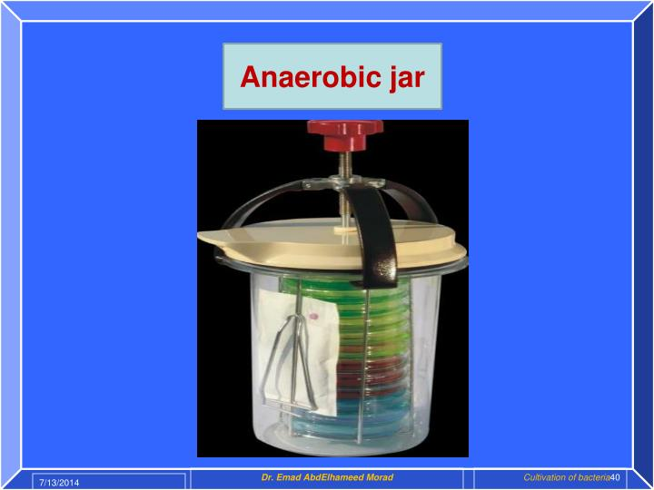 Anaerobic jar