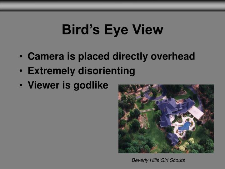 Bird's Eye View