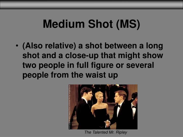Medium Shot (MS)