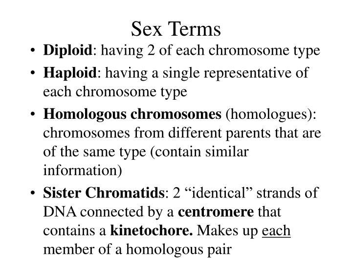 Sex Terms