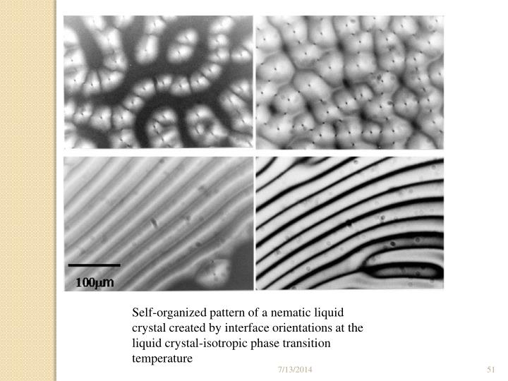 Self-organized pattern of a